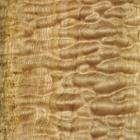 Quilted Maple c/o Hearne Hardwoods